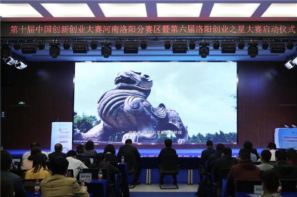 第六届洛阳创业之星大赛再响号角,创新创业之花精彩绽放