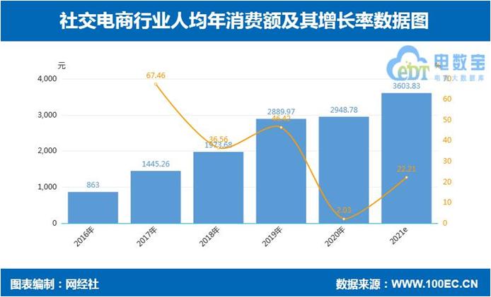网经社:《2020年度中国社交电商市场数据报告》